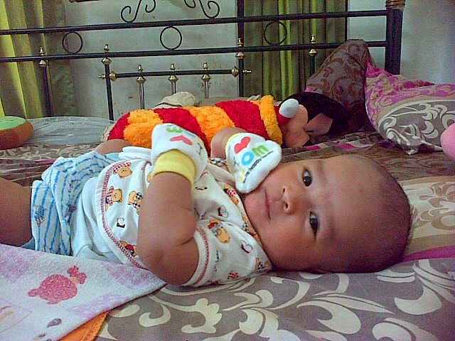 Gambar bayi lucu baru lahir usia 3 minggu
