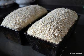Wyrośnięty chleb w foremkach