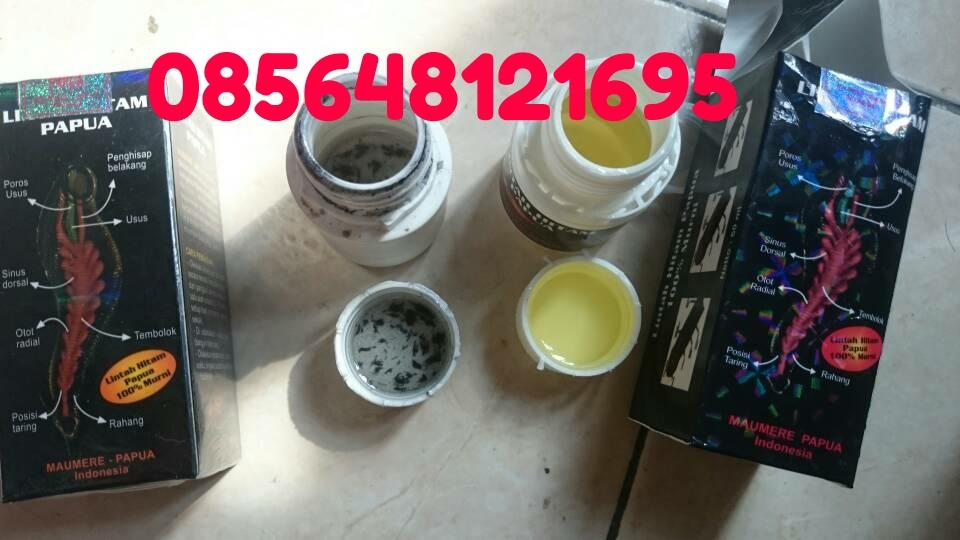 titan gel agen grosir minyak lintah papua asli toko online pak