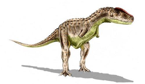 Rugops Dinozoru Nedir
