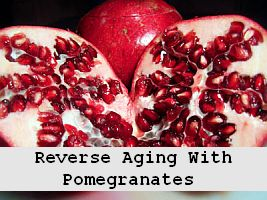 Forever Healthy and Young: Balance Women's Hormones with