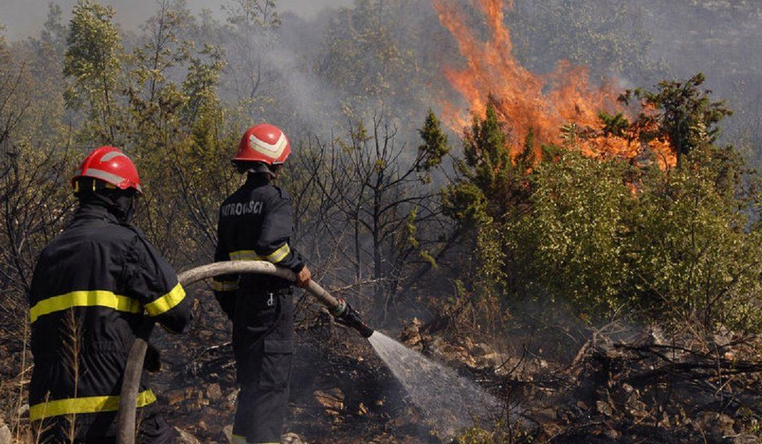 الحرائق تأتي على 841 هكتار من المساحات الغابوية سنة 2018 بالمغرب