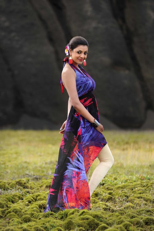 Kajal Agarwal Hot Back Show In Nayak Posted 14th January 2013 by