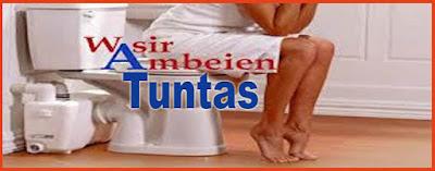 obat tradisional ambeien