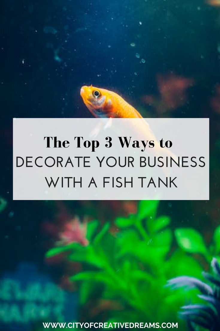 The top 3 ways to Decorate Your Business with a Fish Tank | City of Creative Dreams