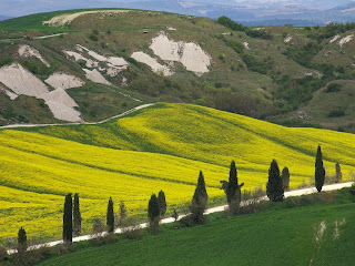 landschap in Val d'Orcia