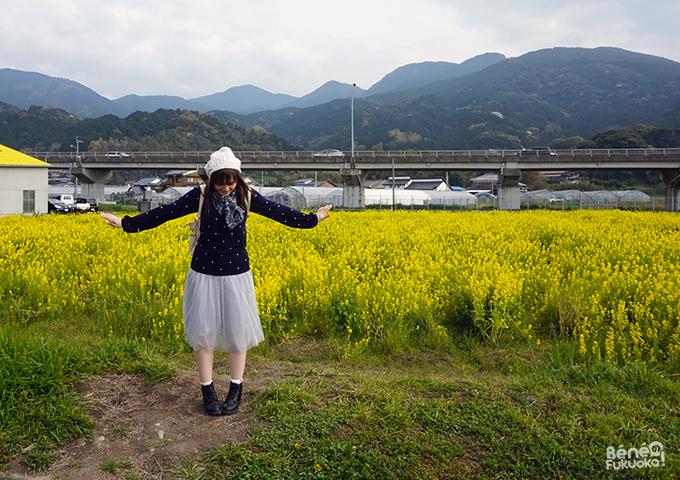 ベネの福岡!菜の花の花畑、福吉、糸島、福岡