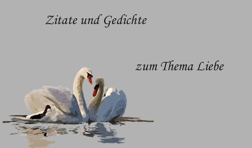 Gedichte Und Zitate Fur Alle Deutsche Gedichte Spruche Und
