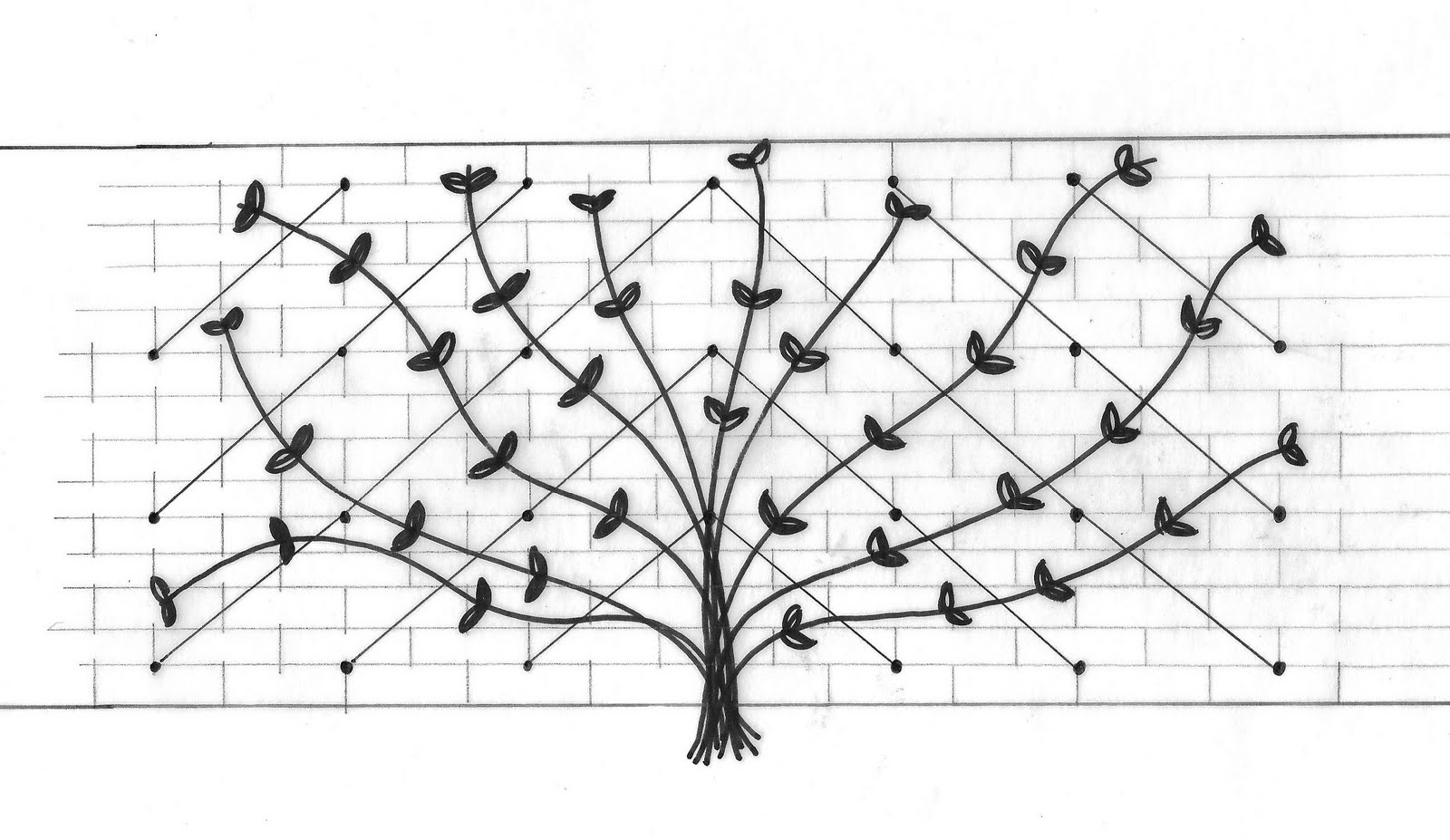 The Absent Minded Gardener How To Make A Wire Trellis For