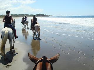 costa rica ranta laukka hevonen ratsastus