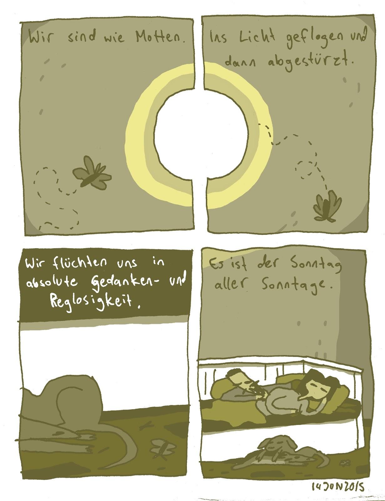 Wie Bekämpfe Ich Motten