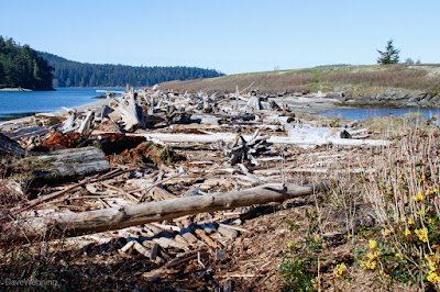 Kukutali Preserve, Washington