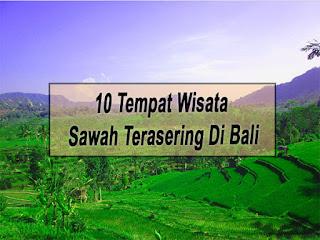 Inilah 10 Tempat Wisata Sawah Terasering Di Bali