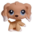 Littlest Pet Shop Large Playset Spaniel (#568) Pet