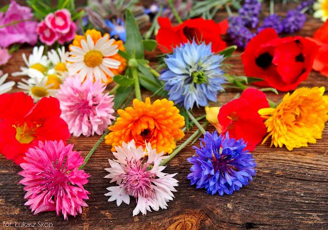 letnie kwiaty jadalne