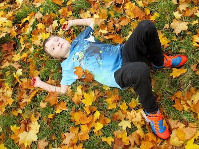 Autumn leaves Westonbirt arboretum Green Fingered Blog