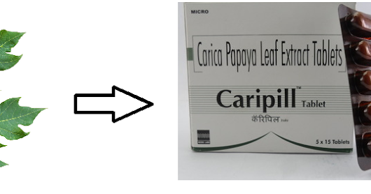Caripill: A Pill with Papaya Leaf Extract to Fight Dengue