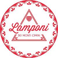 http://lamponideimonticimini.it/
