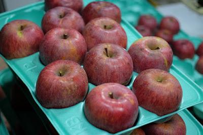 長野県下伊那郡飯島町のリンゴ園 那須野農園 りんご
