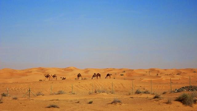 Camino de Omán