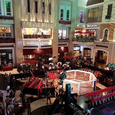Blaze Fighting Championship, octagon cage, Resorts world