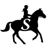Savvy Horsewoman Blog