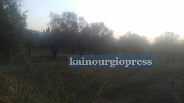 Αποτέλεσμα εικόνας για kainourgiopress λιοστάσι