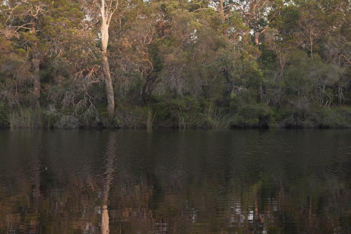 noosa everglades river