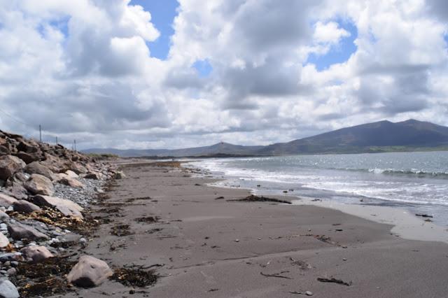 Maharees Kerry beach seaweed