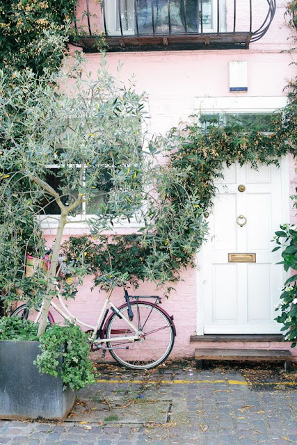 white door and climbing plants | reema desai photography