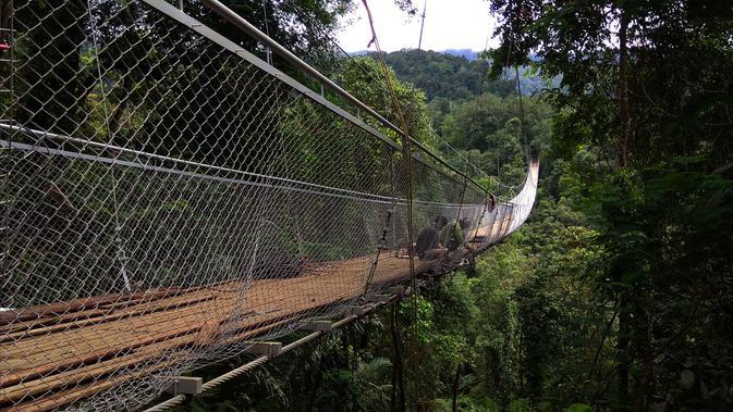 Wisata Jembatan Gantung Sukabumi Paling Hits