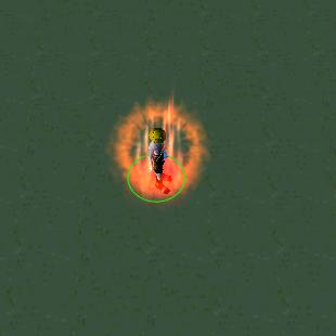 fire shield portgas d. ace bleach vs one piece
