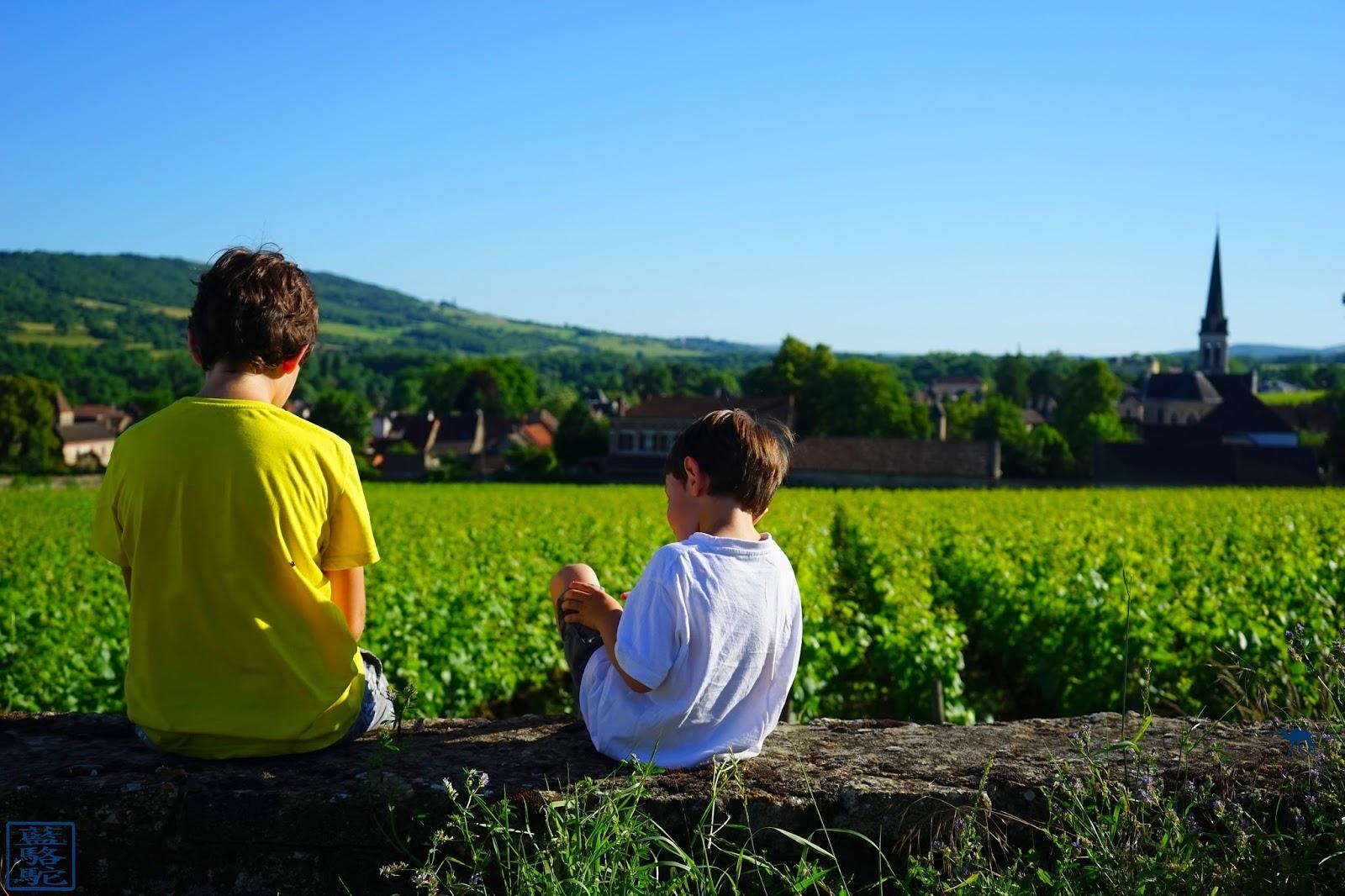Le Chameau Bleu - Enfants dans les vignes