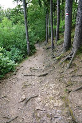 Czerwony szlak z Frydstejn do zamku Vranov