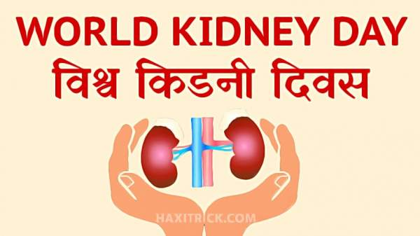 World Kidney Day 2020 Date Theme Celebrated In Hindi