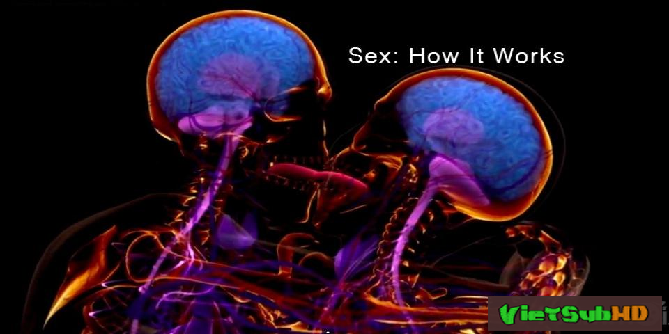 Phim Hoạt Động Của Tình Dục VietSub HD | Sex: How It Works 2013