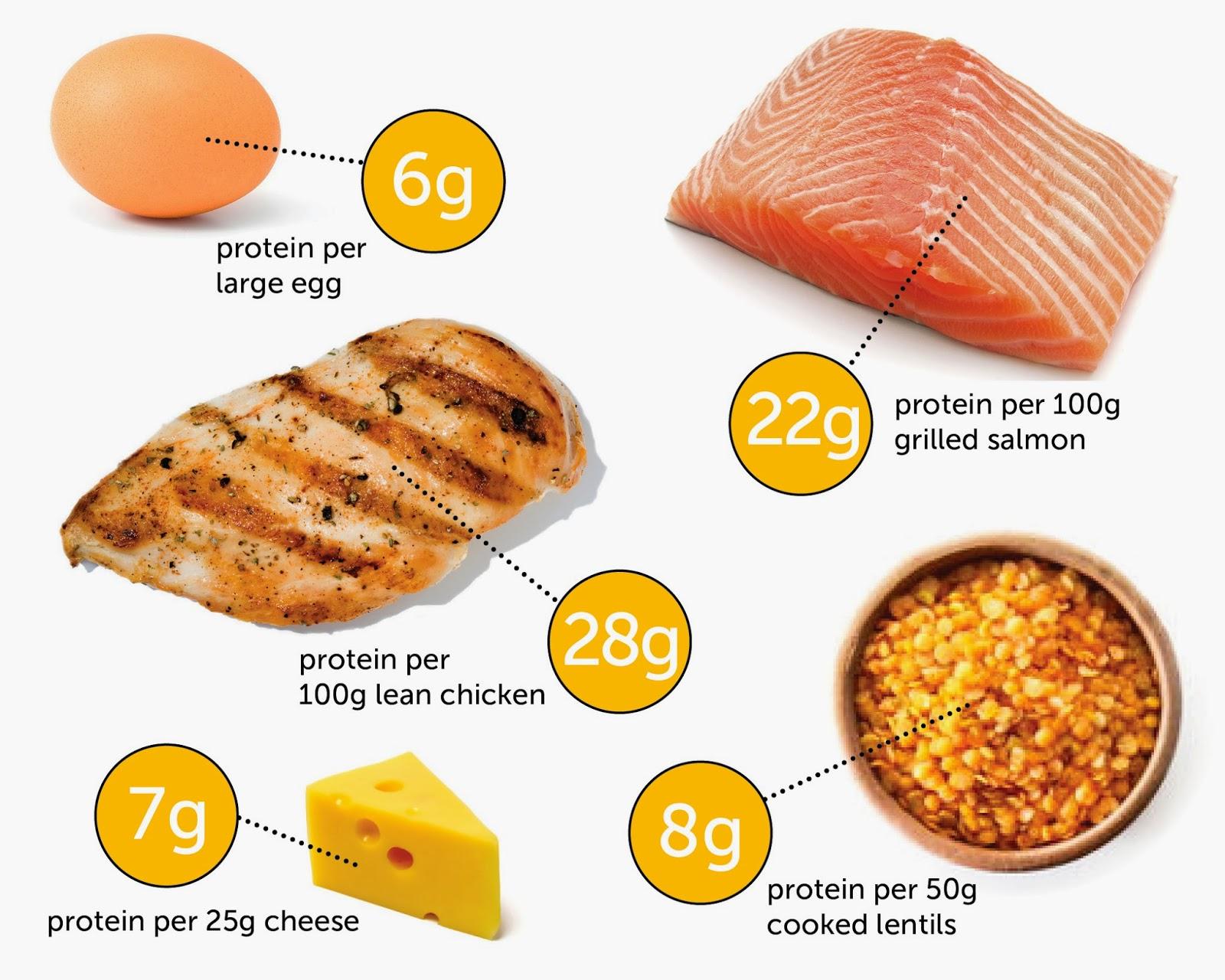 Makanan Yang Mengandung Sumber Protein Tinggi Came