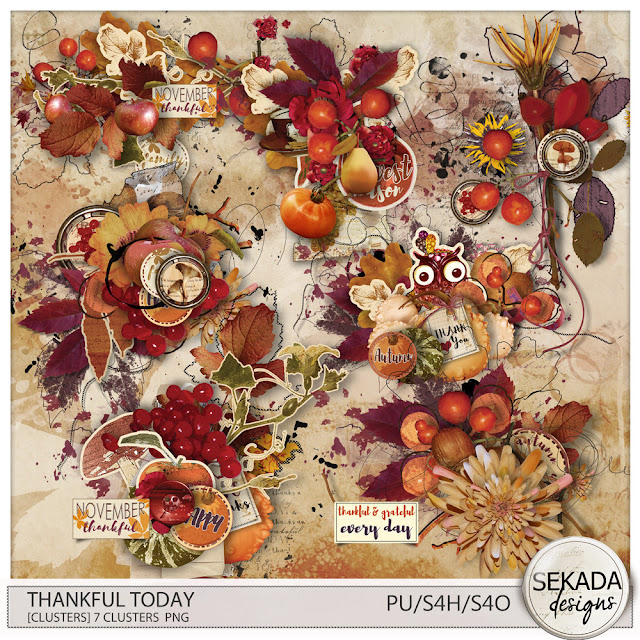 https://www.digitalscrapbookingstudio.com/collections/t/thankful-today-by-sekada-designs/
