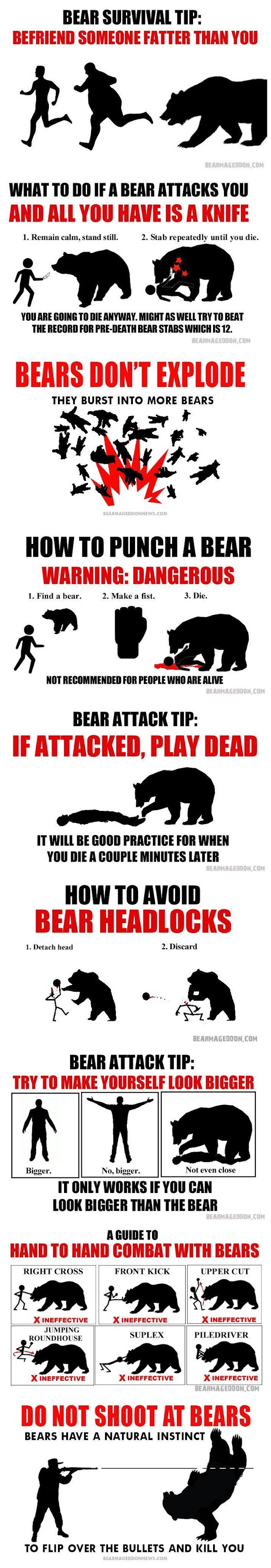 Funny Bear Survival Tips Picture Collection