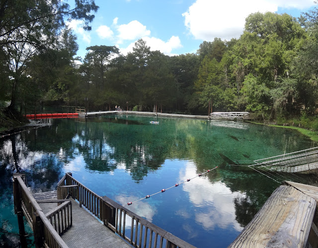 Fanning Springs State Park , Florida USA