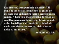 Resultado de imagen para En aquel tiempo, Jesús propuso esta otra parábola a la gente: «El reino de los cielos se parece a un grano de mostaza