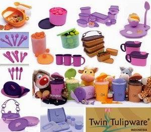 Bisnis Rumahan Twin Tulipware Untuk Ibu Rumah Tangga