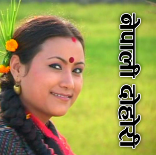 Download Fewa Lok Dohari MP3 Songs Collection