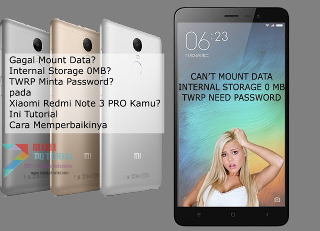 Gagal Mount Data? Internal Storage 0MB? TWRP Minta Password pada Xiaomi Redmi Note 3 PRO Kamu? Ini Tutorial Cara Memperbaikinya