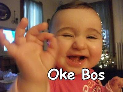 foto bayi oke bos lucu