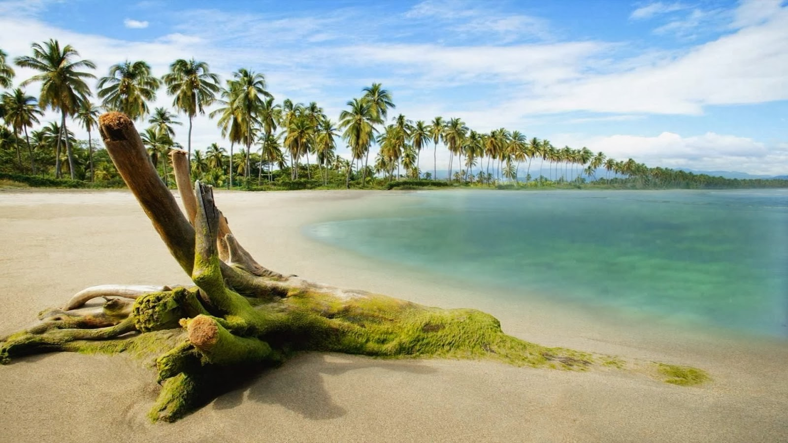 Beach Desktop Wallpaper Widescreen: Beach Nature HD Wallpapers 1080p Widescreen