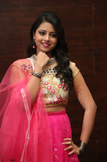 Geethanjali sizzles in Pink at Mixture Potlam Movie Audio Launch 011.JPG