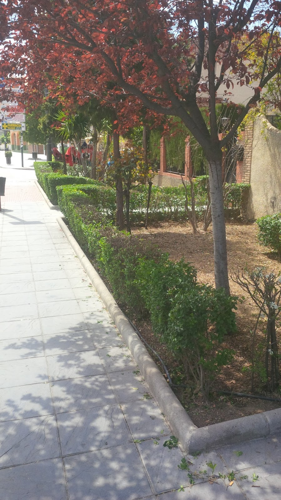 parques y jardines de ogijares jardines de calle granada