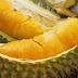Manfaat Buah Durian Untuk Kesehatan Tubuh Kita