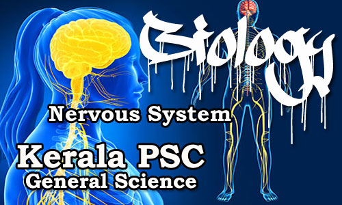 Kerala PSC - Biology - Human Body (Nervous System)